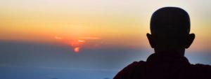 I solnedgang
